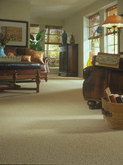 carpet flooring in lloydminster